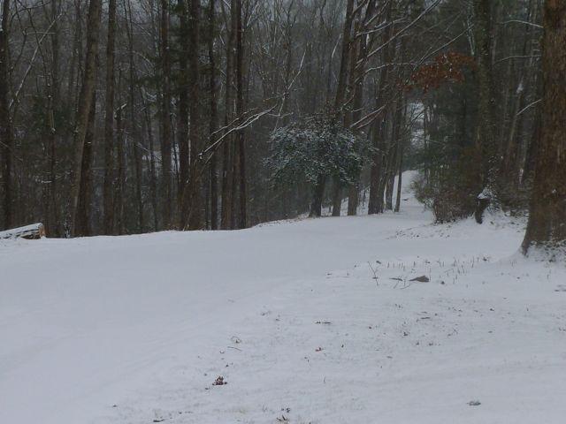 SnowJan2014-2
