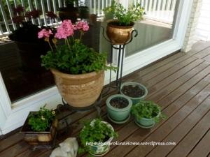 potsplanted