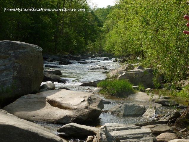 River Rocks | From My Carolina Home